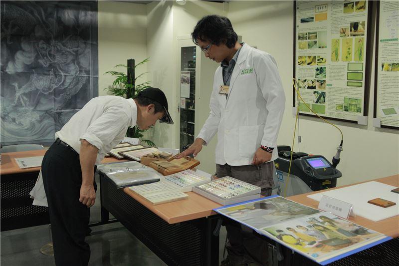 文資修復人員介紹木材樣本及彩繪顏料