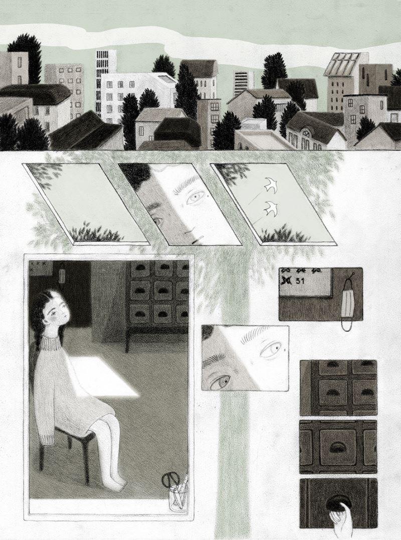 樹冠羞避(卓霈欣提供)-1