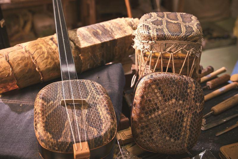 蟒蛇皮所製成的三弦琴身,耗時費工,需縫製在布上日曬才能定型。
