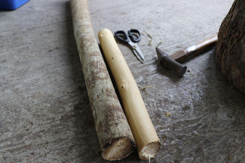 將採集的樹幹反覆來回敲打後,取出中間的纖維進行樹皮布製作。