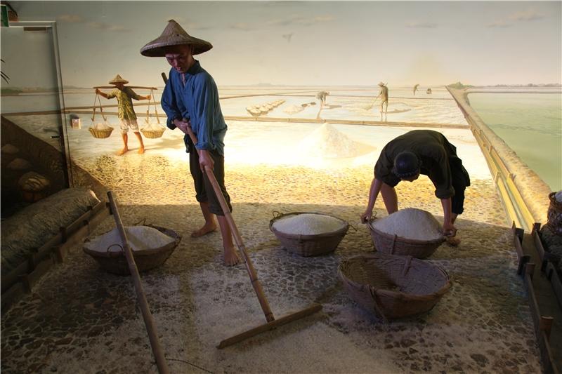 圖為西南沿海居民運用日照充足的環境條件,發展鹽產業,一坵坵的鹽埕讓「白水」變成「鹹金」。