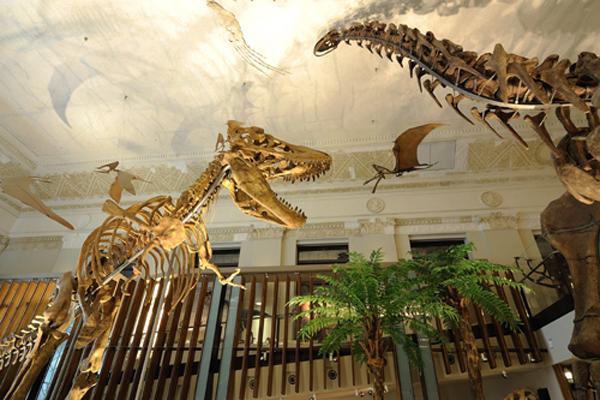 古生物大展-恐龍模型展區