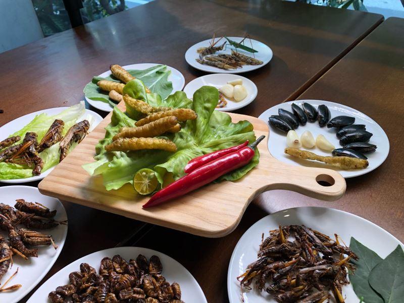 圖4_專家論壇邀請昆蟲作家黃仕傑提供昆蟲料理案例