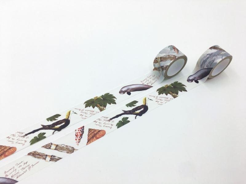 紙膠帶-島嶼自然史II