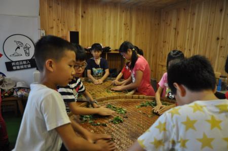 2016兒童工藝夏令營-參訪茶2指故事館-紅茶揉捻DIY