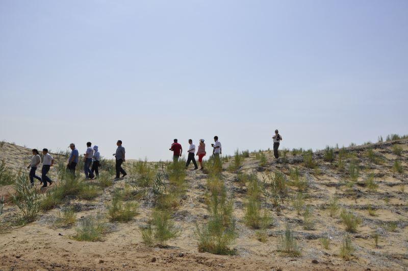 第10屆海峽兩岸沙塵與環境治理學術研討會─考察沙漠治沙成果