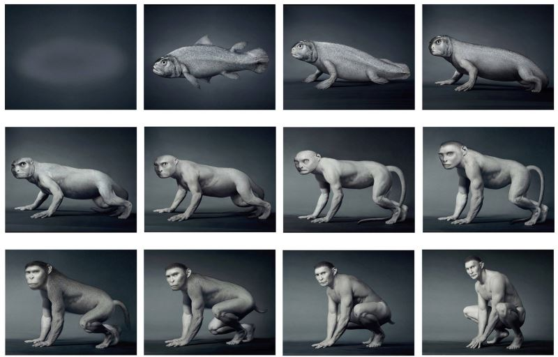 Daniel Lee Origin, Digital video animation, 1999-2003 Origin was a series of manipulated photo images and animation created in 1999. It describes the human evolution based on my own imagination. I suggest that there were ten stages in human evolution, from the fish form (as Coelacanth) and then transformed to the reptile, monkey and human...