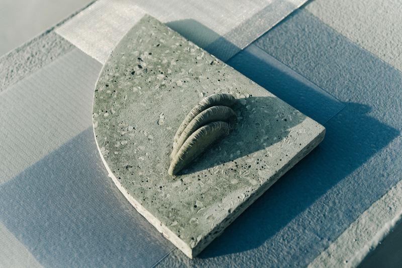 藝術家林希羽試圖找到魚鱗運用於建材的可能性