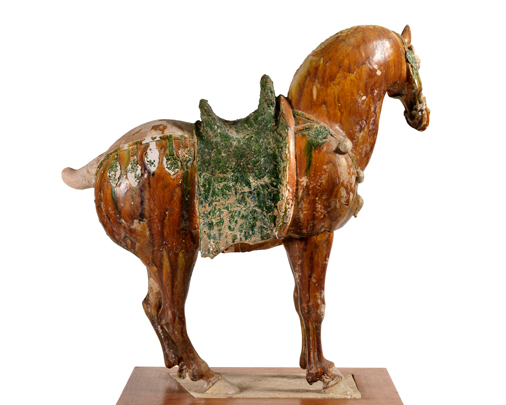 Tri-colour horse, profile view-Large