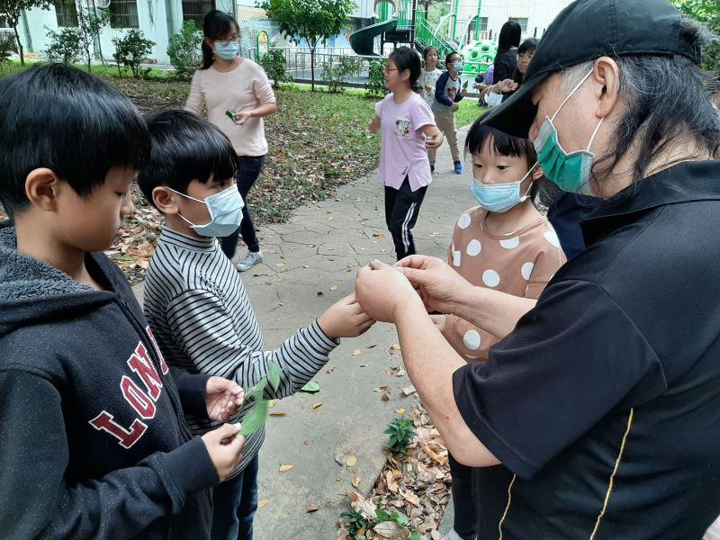 01-漆工藝王清源老師帶著學生在校園裡採集適合做拓葉的植物。
