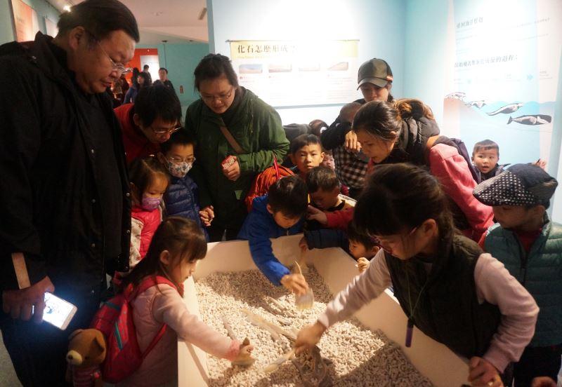 圖3化石挖掘體驗區深受兒童喜愛