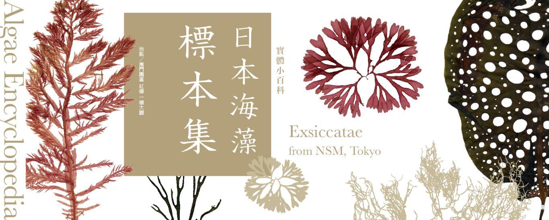 [微型展]實體小百科-日本海藻標本集banner