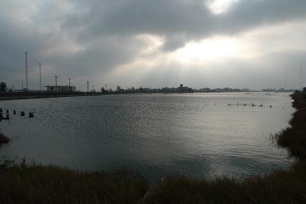 Wetlands reappeared,