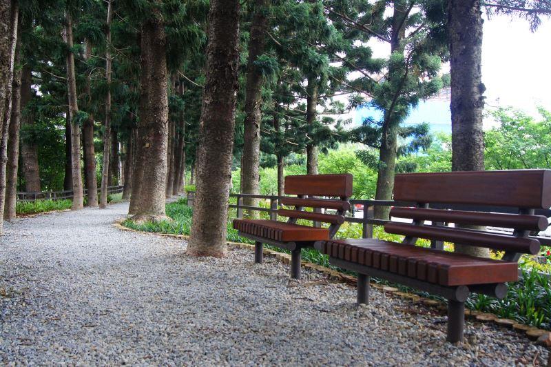南洋杉步道提供民眾休息座椅