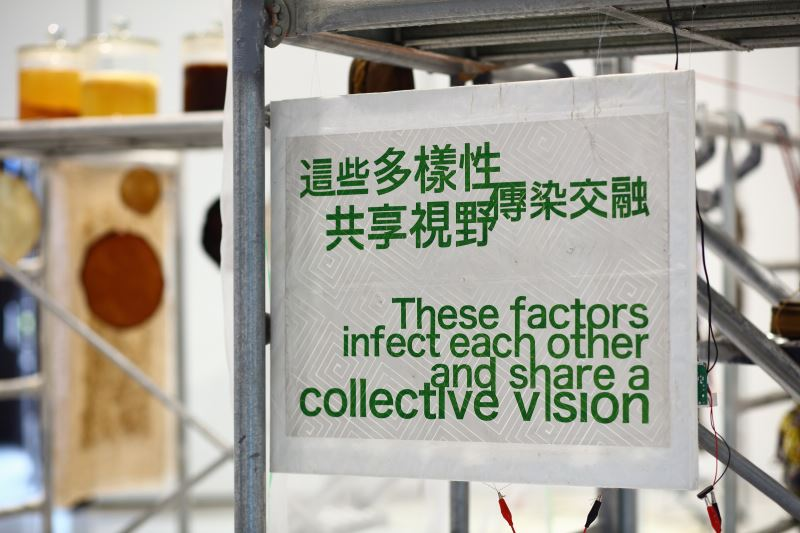 「來自未來的朋友」策展裝置材料庫第三自然纖維材料庫宣言十一句之一紙音箱