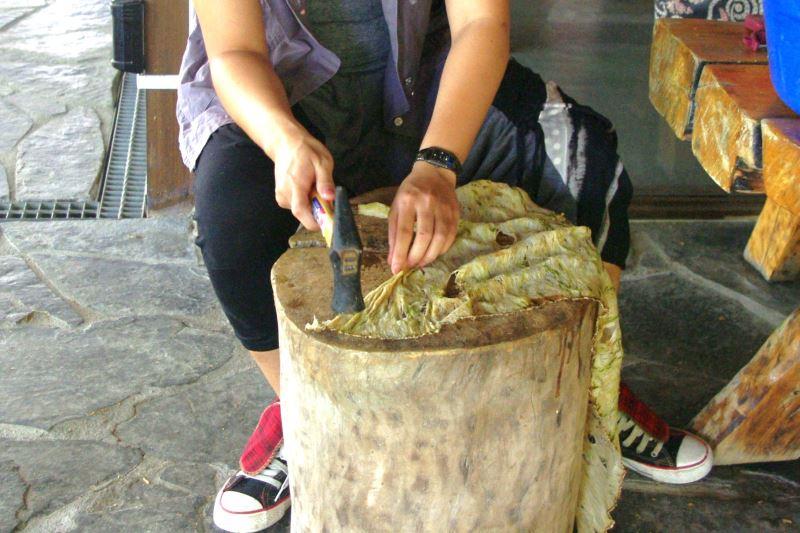 反覆敲打可以讓樹皮更加柔軟。