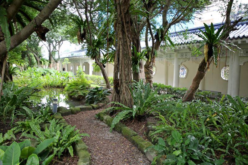 熱帶雨林園區(迴廊旁)