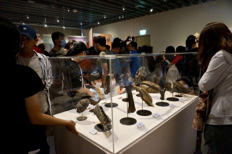 圖3「史前巨獸-古生物特展」展出20餘件澎湖海溝發現的化石