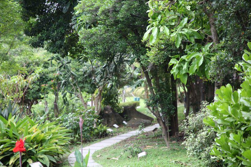 羊腸小徑、綠樹成蔭