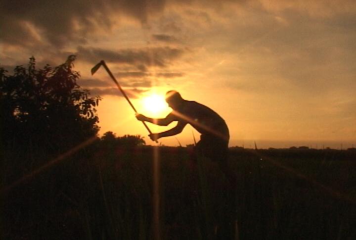台南縣後壁鄉「農業保護區」中,四位「末代稻農」整年辛勤耕作,一生奉獻這片田地,年逾古稀仍默默耕耘,讓豐饒大地結出整片金黃稻穗,提供島嶼上的人民賴以維生的糧食。本片在台灣上映期間,奇蹟似引發觀影風潮,且叫好叫座,甚至使得農業議題成為政治討論的焦點。片中「做田如同坐禪」的農民生命哲學,除了是從勞動生活而來的素樸智慧,也委婉控訴了台灣社會以農起家,「以農養工」、工商業發達、生活富庶之後,對於農民的遺忘與不義。