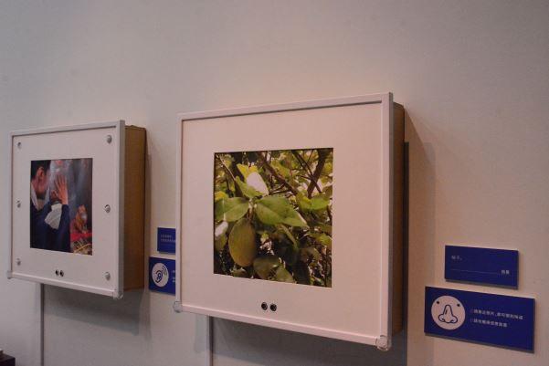 攝影作品《柚子》,可經由感應後發出柚子香味,是一般攝影展中較少見的「多感官攝影作品」。