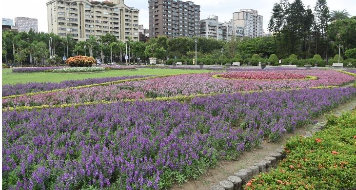 中山公園花圃一角