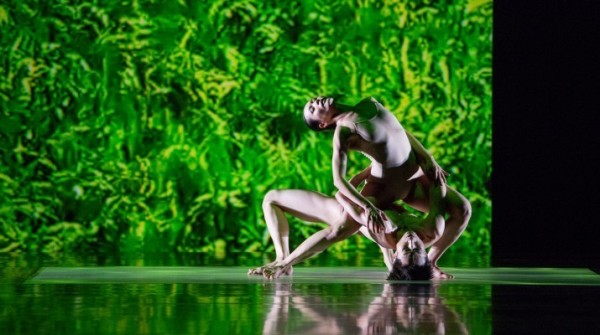 Rare Cloud Gate performance slated for Sept. 23 in Amherst