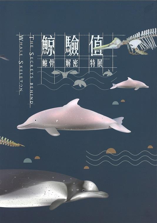 鯨驗值:鯨骨解密特展