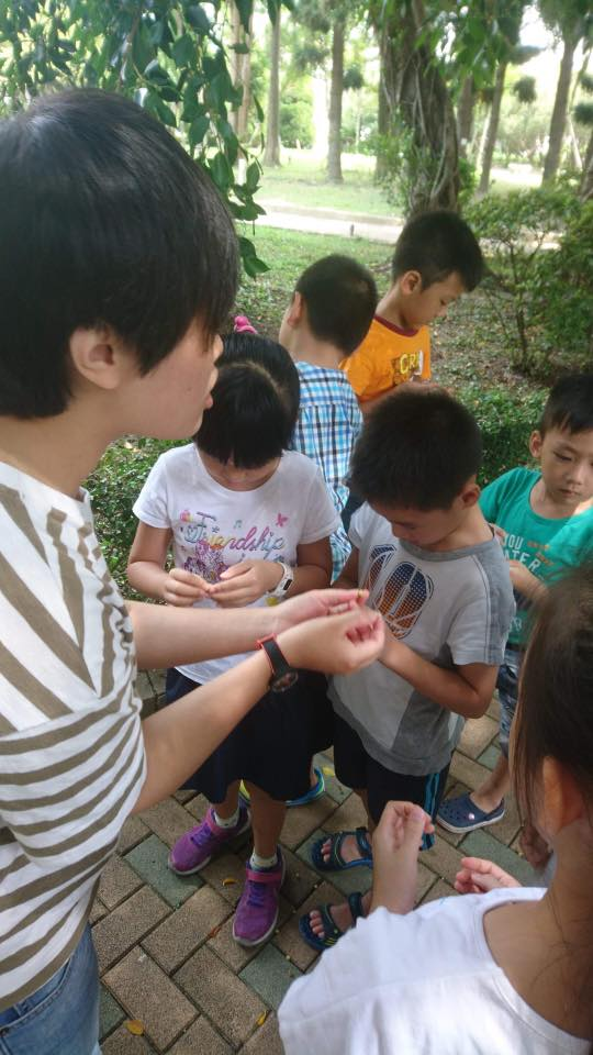 冒險玩一夏暑期環境教育5月15日開放報名~