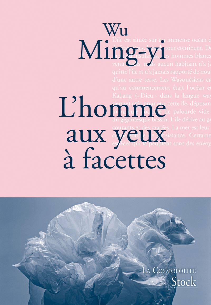 French translation of major Taiwanese works released