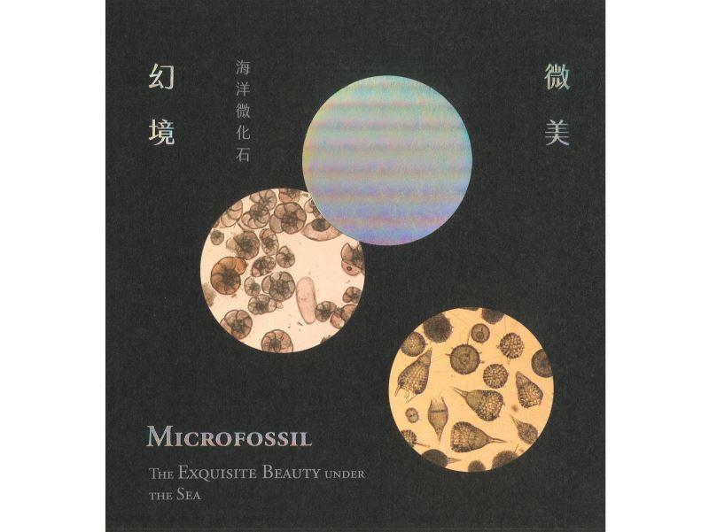 微美幻境:海洋微化石