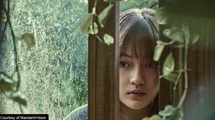 Taiwan Cinema continues to shine NYAFF 2018 with an eclectic mix of films by emerging Taiwanese filmmakers July 4 -8, Walter Reade Theater