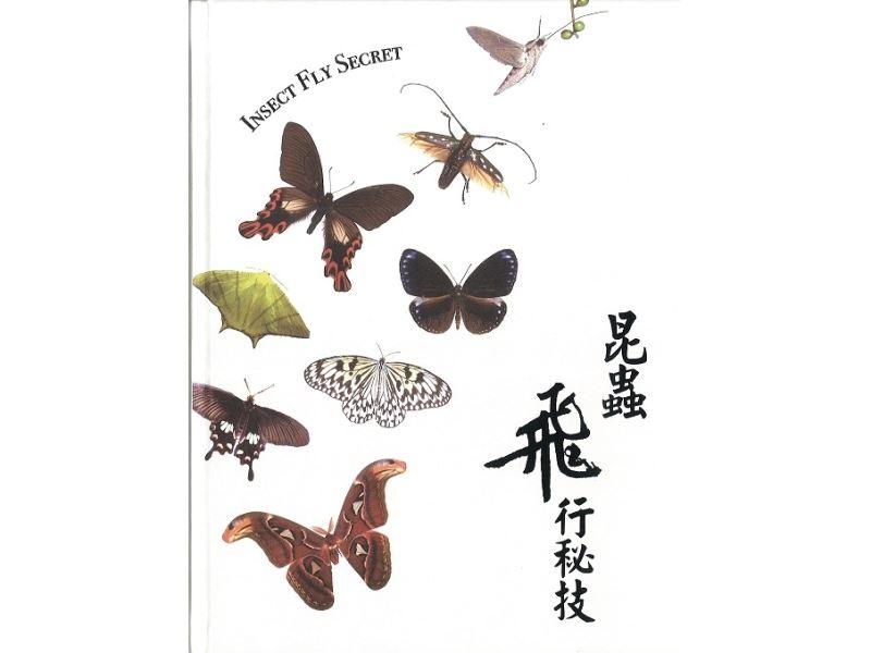 昆蟲飛行秘技