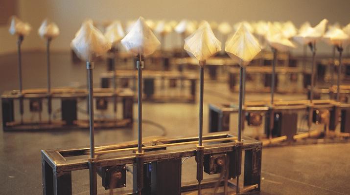詩意的理性,溫暖的冰冷  徐瑞憲紐約個展
