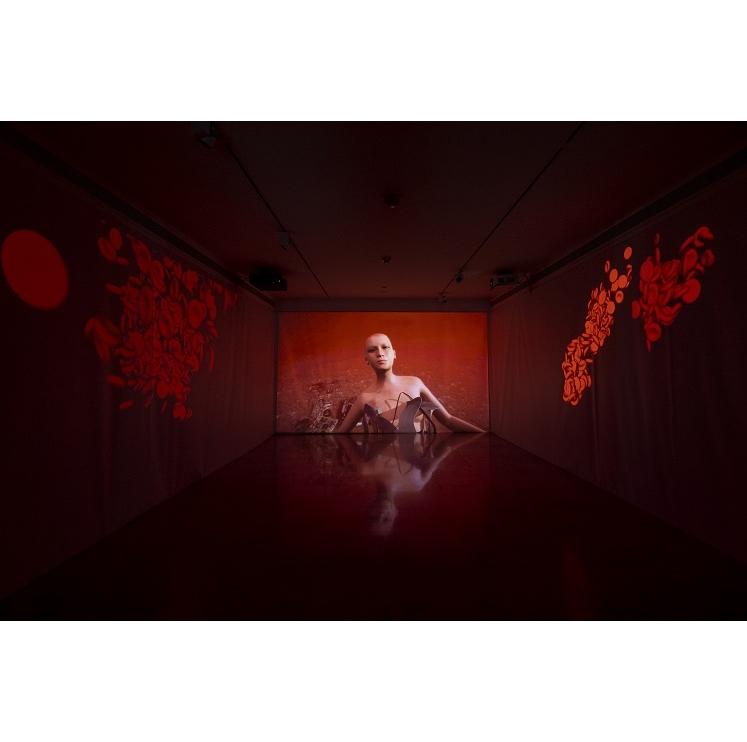 Une exposition en ligne de Shu Lea Cheang  présentée par le Musée des Arts Asiatiques de Nice