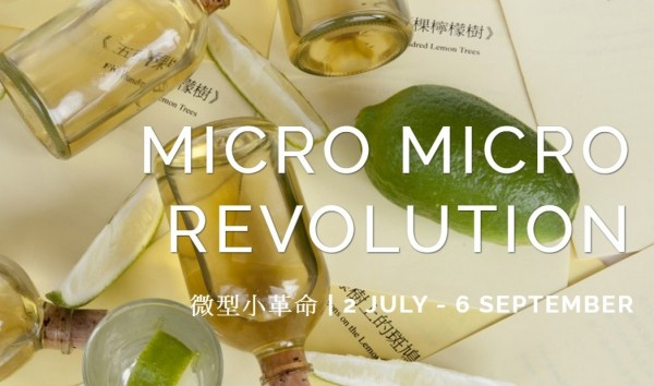 'Micro Micro Revolution' ignites dialogue in the UK