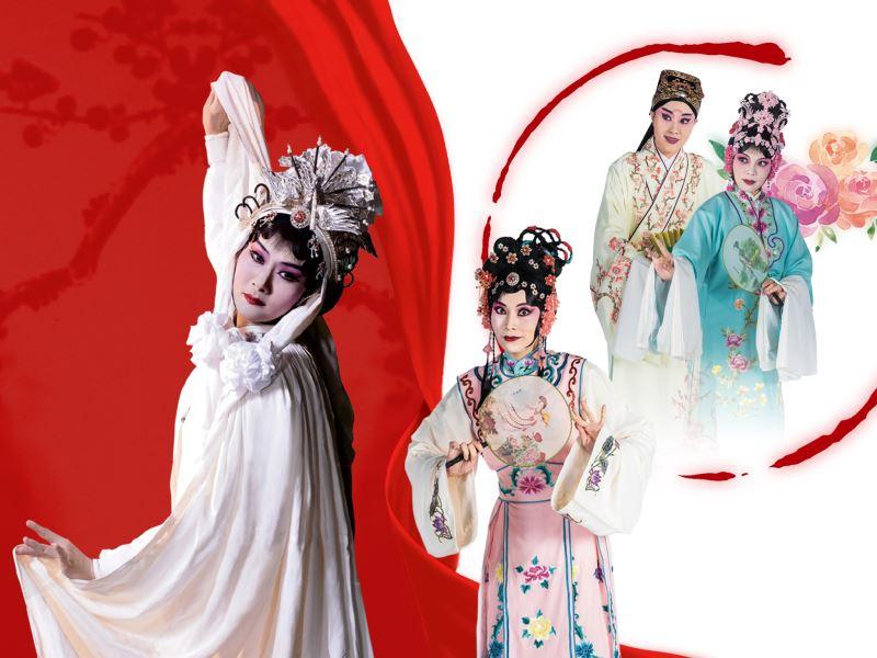 臺灣豫劇團2020年賀歲公演-1/10一樹紅梅、2/1紅娘