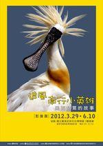 「追風南行小英雄-黑面琵鷺的故事」影像展