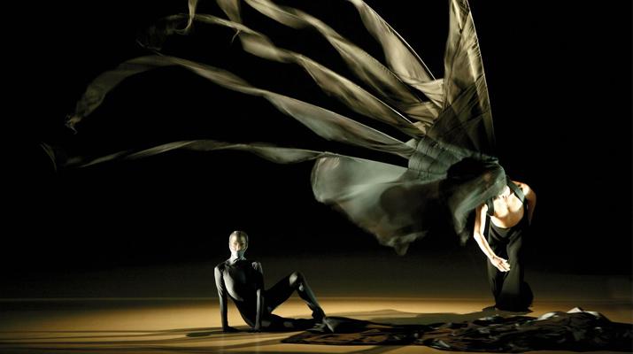 雲門舞集「《風.影》意象」