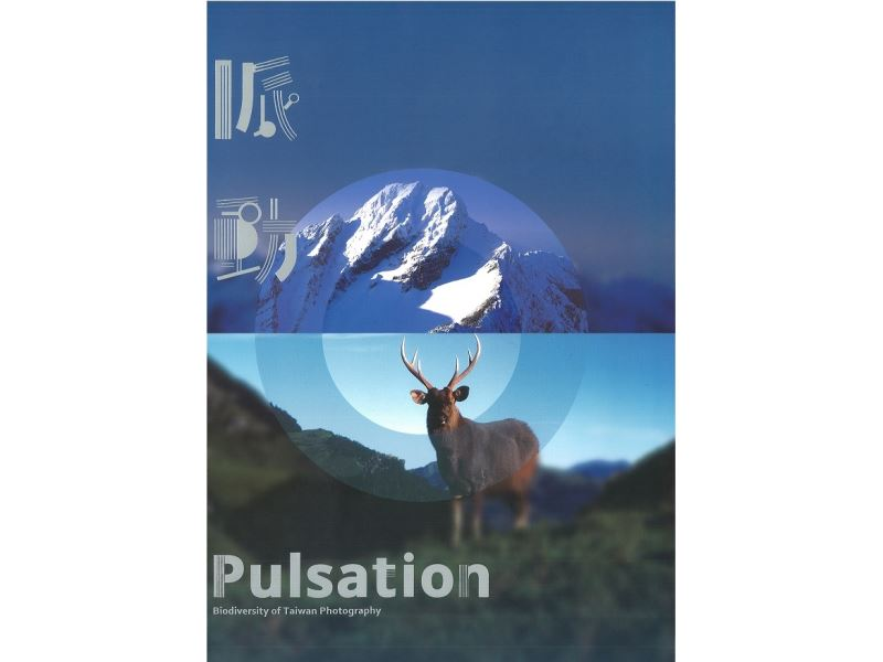 Pulsation - Biodiversity of Taiwan Photography