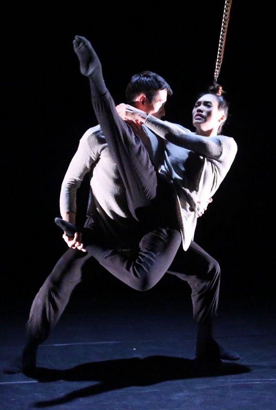 Rapport Series XXVIII: Hung Dance