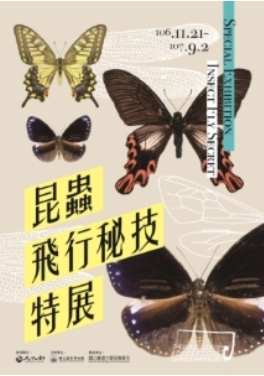 Special Exhibiotion of Insect Fly Secret
