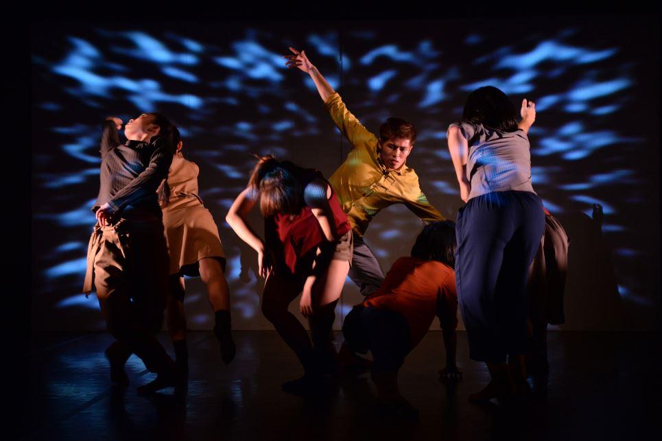 Resident Island Dance Theatre