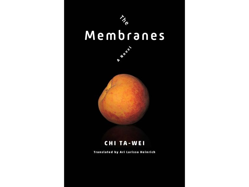 U.S. publisher releases Taiwanese queer writer Chi Ta-wei's novel 'The Membranes'