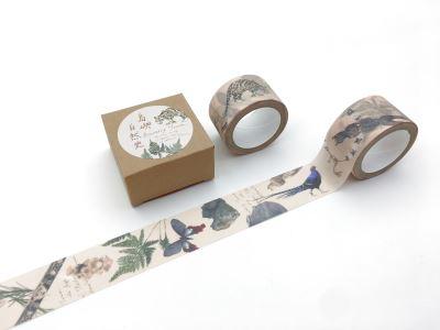 紙膠帶-島嶼自然史
