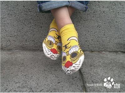 虎咖─臺灣民主國黃虎襪