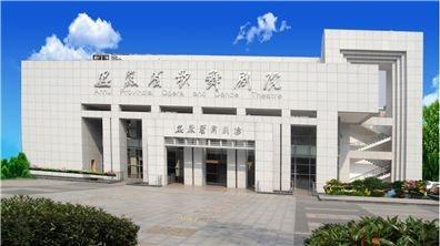 安徽省歌舞劇院 企業化經營