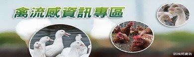 禽流感資訊專區[另開新視窗]