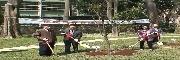 紀念國父逝世93週年 梅花三弄喜迎春 植梅樹活動